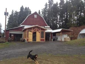 farmhouse and beerdog